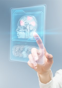 researcher pointing to brain image